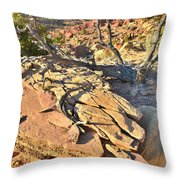Scenic Drive Slabs Throw Pillow