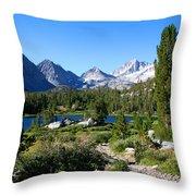 Scenic Mountain View Throw Pillow