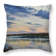 Scenic Overlook - Delaware River Throw Pillow