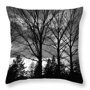 Scenic State Capital Throw Pillow