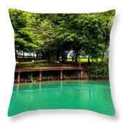 Scenic Swans Throw Pillow