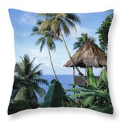 Scenic Thatched Hut Throw Pillow