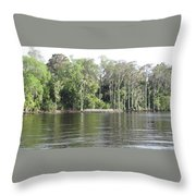 Scenic Trees Throw Pillow