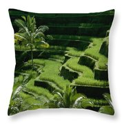 Scenic Valleys With Rice Fields In Bali Throw Pillow