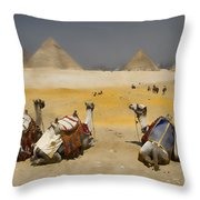Scenic View Of The Giza Pyramids With Sitting Camels Throw Pillow