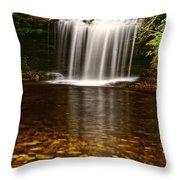 Schoolhouse Falls - Nc Throw Pillow