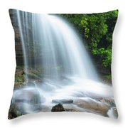 Schoolhouse Falls In Nantahala National Forest Panorama Throw Pillow