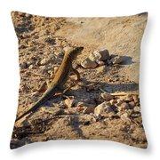 Schreiber's Fringe-fingered Lizard Throw Pillow