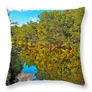 Schroon River Reflection In The Adirondacks-new York Throw Pillow