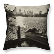 Schuylkill River In Winter Throw Pillow