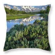 Schwabacher Landing In Grand Teton Throw Pillow