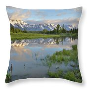 Schwabacher Landing Morning Throw Pillow