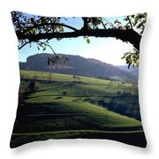 Schwarzwald Throw Pillow