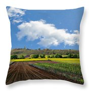 Schwellenburg Nature Reserve Throw Pillow