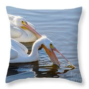 Scooping For Fish Throw Pillow