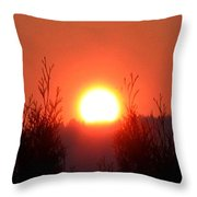 Scorching Sun Throw Pillow