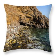 Scorpion Anchorage Throw Pillow