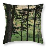 Scots Pine Throw Pillow