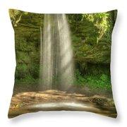 Scott Falls 4741 Throw Pillow