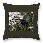 Screamin Eagle Throw Pillow