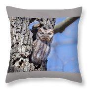 Screech Owl #2 Throw Pillow