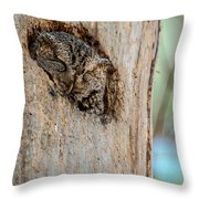 Screech Owl In A Tree Throw Pillow