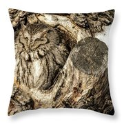 Screech Owl In Cavity Nest Throw Pillow