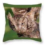 Screech Owl In Flight Throw Pillow