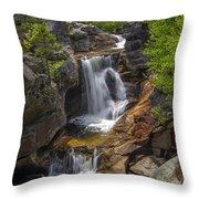 Screw Auger Falls Throw Pillow