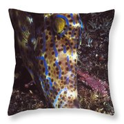 Scribbled Leatherjacket, Aluterus Throw Pillow