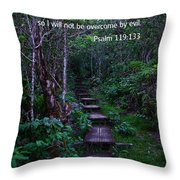 Scriture And Picture Psalm 119 133 Throw Pillow