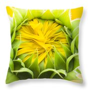 Scrunched Throw Pillow