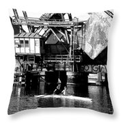 Sculling For Two Throw Pillow