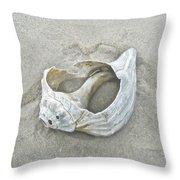 Sculpted By The Atlantic Ocean Throw Pillow