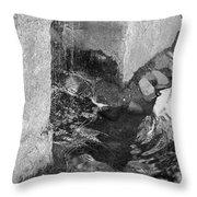 Sculpture Garden IIi In Black And White Throw Pillow