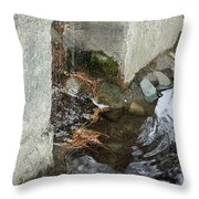 Sculpture Garden IIi Throw Pillow