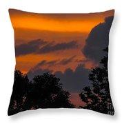 Mulberry Tree Sunrise Throw Pillow