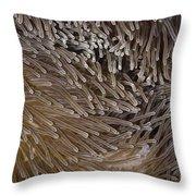 Sea Anemone Closeup Throw Pillow