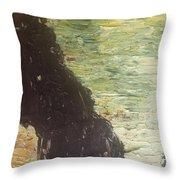 Sea Arch Throw Pillow