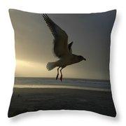 Sea Bird 6 Throw Pillow