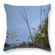 Sea Bird Flight Throw Pillow