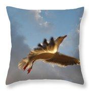 Sea Birds 12 Throw Pillow