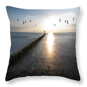 Sea Birds Sunset. Throw Pillow