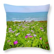 Sea Daisy Trail Throw Pillow