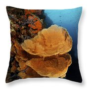 Sea Fan Coral - Indonesia Throw Pillow