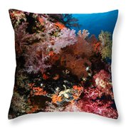 Sea Fans And Soft Coral, Fiji Throw Pillow