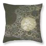 Sea Foam Over Sand Dollars Throw Pillow