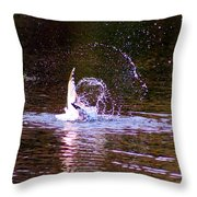 Sea Gull Abstract Throw Pillow