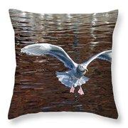 Sea Gull Landing Throw Pillow