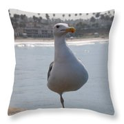 Sea Gull On One Foot  Throw Pillow